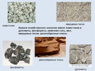 Важное хозяйственное значение имеют известняки и доломиты, фосфориты, каменна