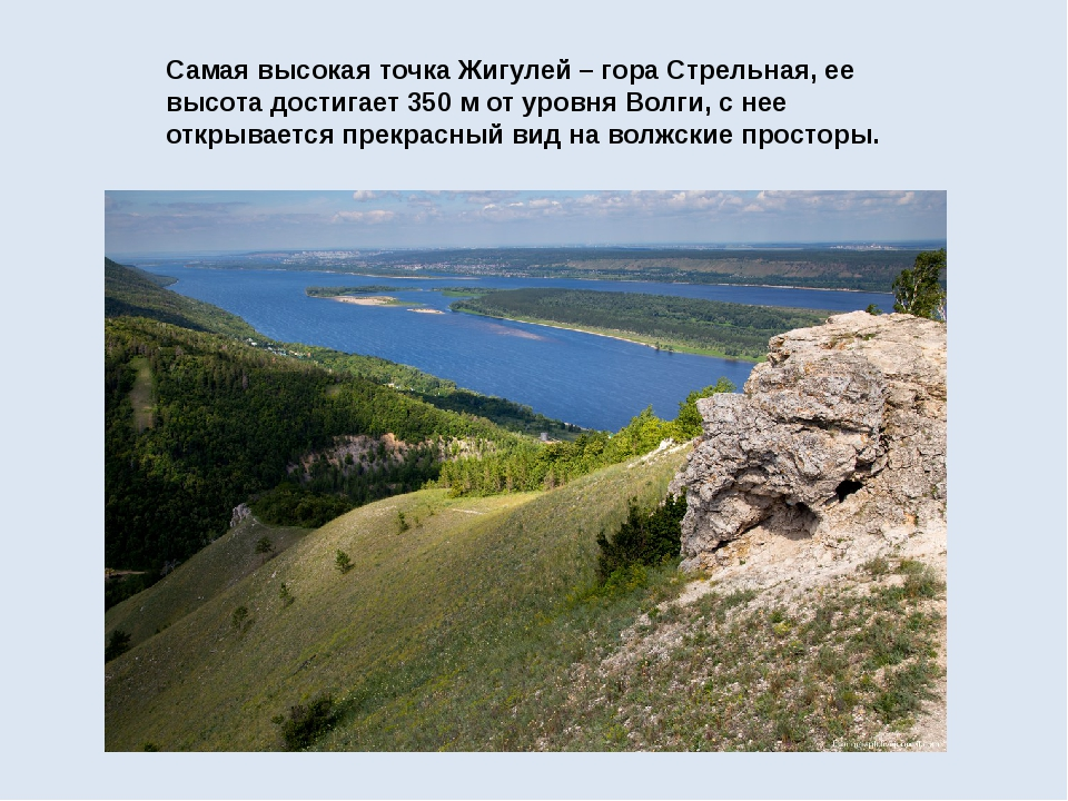 Самая высокая точка Жигулей –гора Стрельная, ее высота достигает 350 м от ур...