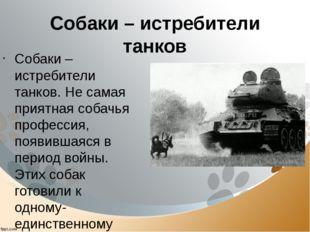 Собаки – истребители танков Собаки – истребители танков. Не самая приятная со