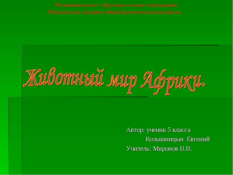 Автор: ученик 5 класса Колышницын Евгений Учитель: Миронов В.В. Муниципальное...