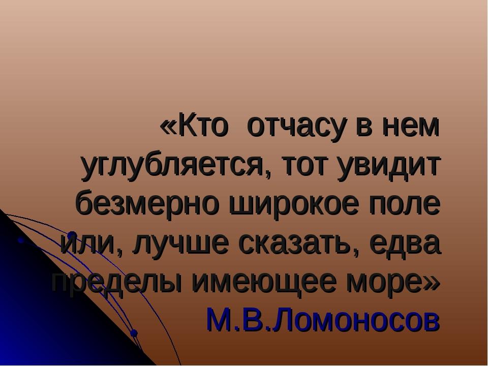 «Кто отчасу в нем углубляется, тот увидит безмерно широкое поле или, лучше ск...