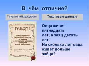 Текстовые данные Текстовый документ Овца живет пятнадцать лет, а заяц десять
