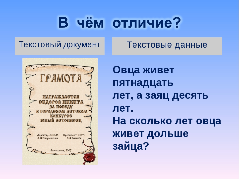Текстовые данные Текстовый документ Овца живет пятнадцать лет, а заяц десять...