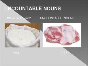 "UNCOUNTABLE NOUNS We cannot ""count"" UNCOUNTABLE NOUNS flour meat"