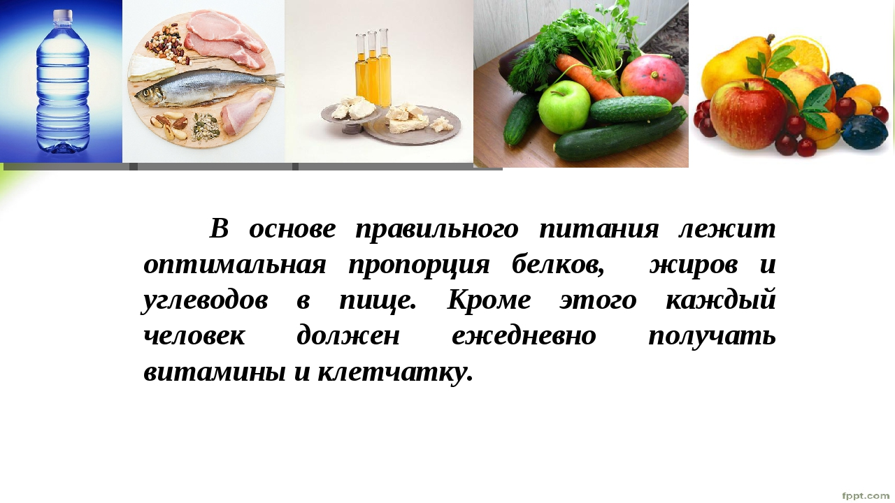 В основе правильного питания лежит оптимальная пропорция белков, жиров и угл...