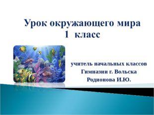 учитель начальных классов Гимназии г. Вольска Родионова И.Ю.