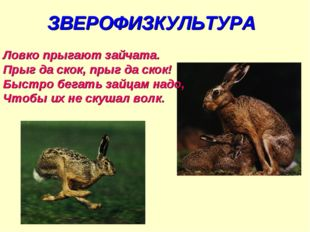 ЗВЕРОФИЗКУЛЬТУРА Ловко прыгают зайчата. Прыг да скок, прыг да скок! Быстро бе