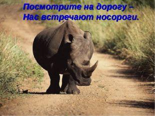 Посмотрите на дорогу – Нас встречают носороги.