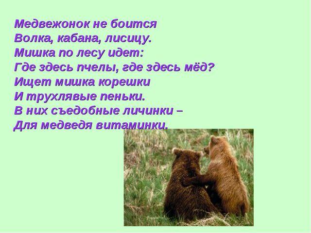 Медвежонок не боится Волка, кабана, лисицу. Мишка по лесу идет: Где здесь пче...