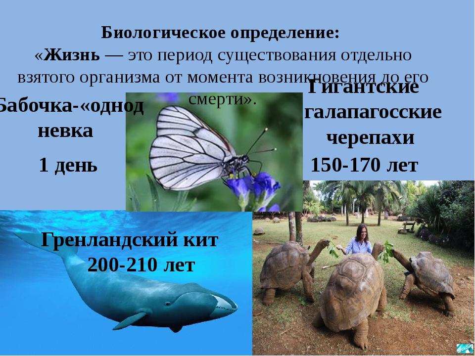 Биологическое определение: «Жизнь — это период существования отдельно взятого...