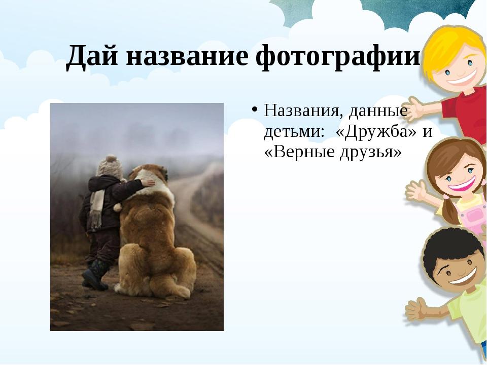 Дай название фотографии Названия, данные детьми: «Дружба» и «Верные друзья»