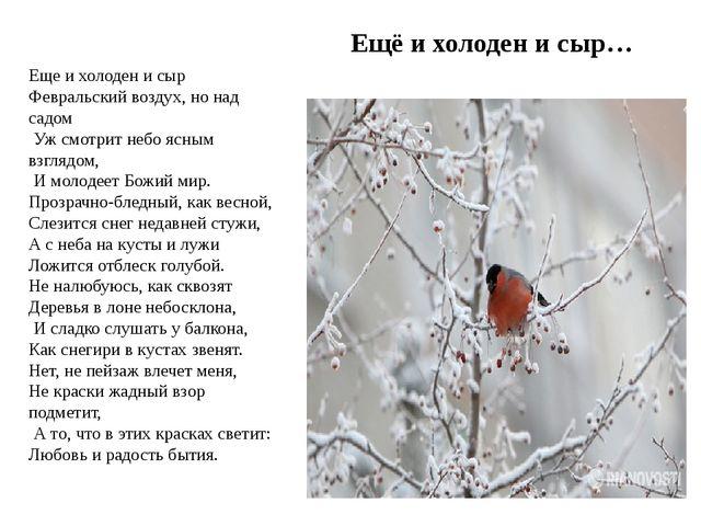 Ещё и холоден и сыр… Еще и холоден и сыр Февральский воздух, но над садом Уж...