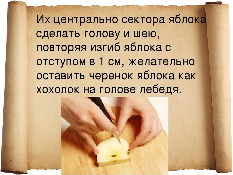 Их центрально сектора яблока сделать голову и шею, повторяя изгиб яблока с от...