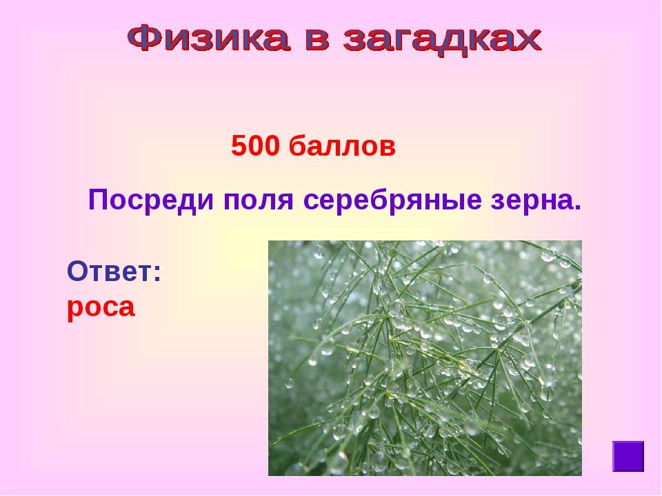 500 баллов Посреди поля серебряные зерна. Ответ: роса