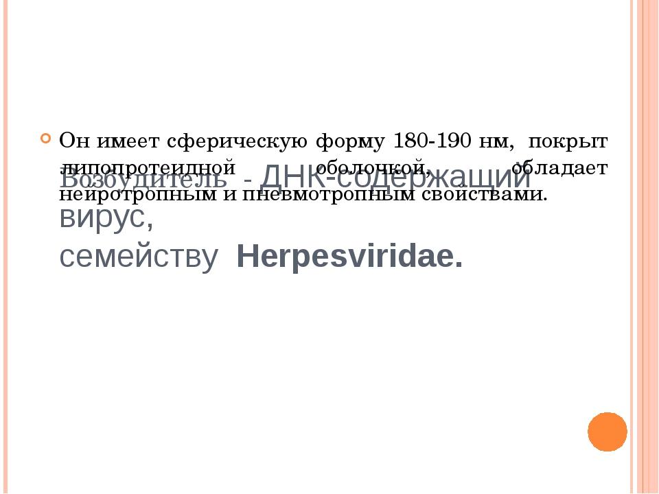 Возбудитель - ДНК-содержащий вирус, семейству Herpesviridae. Он имеет сфер...