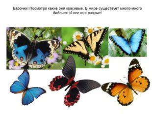 Бабочки! Посмотри какие они красивые. В мире существует много-много бабочек!