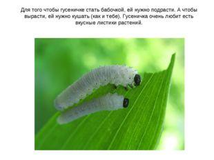 Для того чтобы гусеничке стать бабочкой, ей нужно подрасти. А чтобы вырасти,