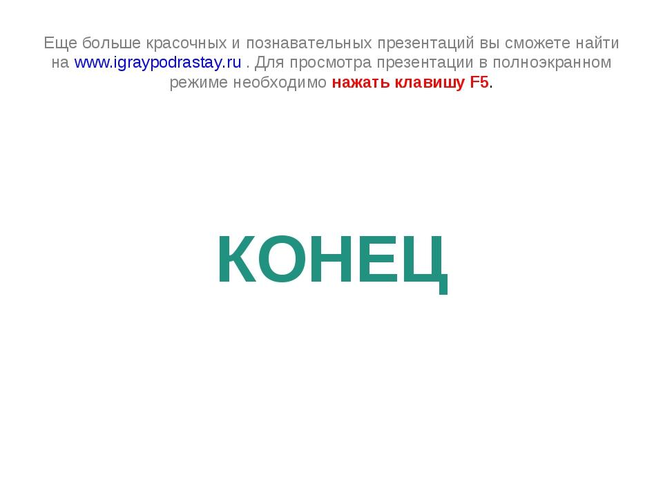 Еще больше красочных и познавательных презентаций вы сможете найти на www.igr...