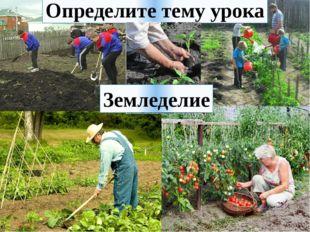 Определите тему урока Земледелие