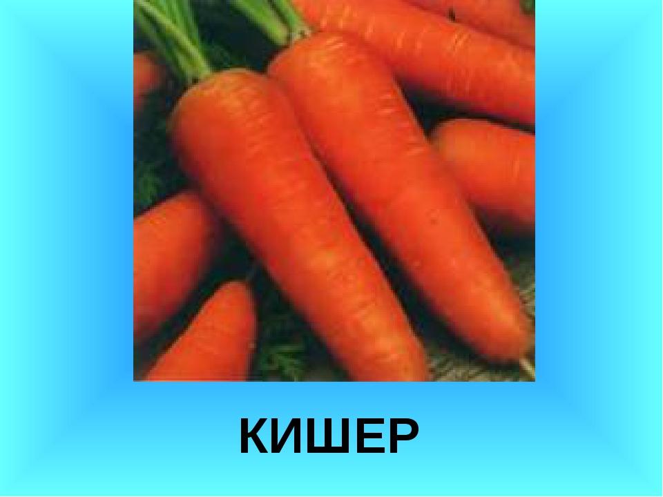 КИШЕР