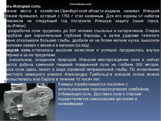 Соль-Илецкая соль Соль-Илецкая соль Важное место в хозяйствеОренбургской обл...