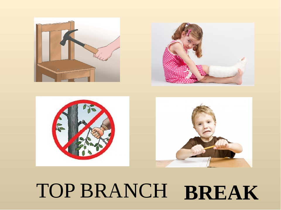 TOP BRANCH BREAK