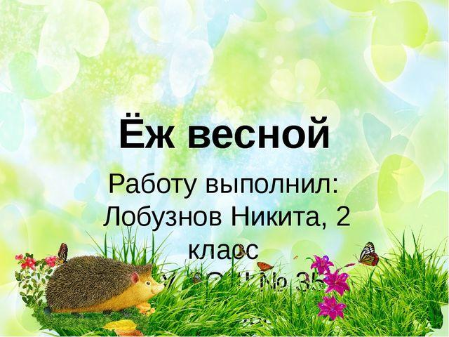Ёж весной Работу выполнил: Лобузнов Никита, 2 класс МАОУ СОШ № 35 г. Тамбова