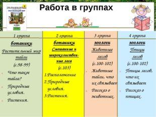1 группа ботаники Растительный мир тайги (с.98-99) Что такое тайга? Природные