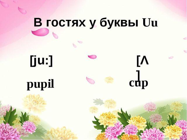 В гостях у буквы Uu [ju:] [Λ] pupil cup