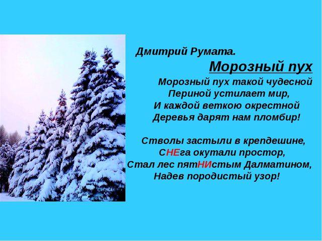 Дмитрий Румата. Морозный пух Морозный пух такой чудесной Периной устилает ми...