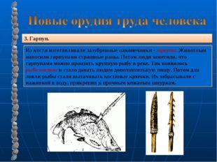3. Гарпун. Из кости изготавливали зазубренные наконечники - гарпуны. Животным