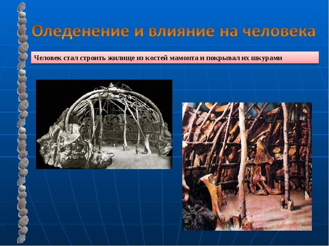 Человек стал строить жилище из костей мамонта и покрывал их шкурами