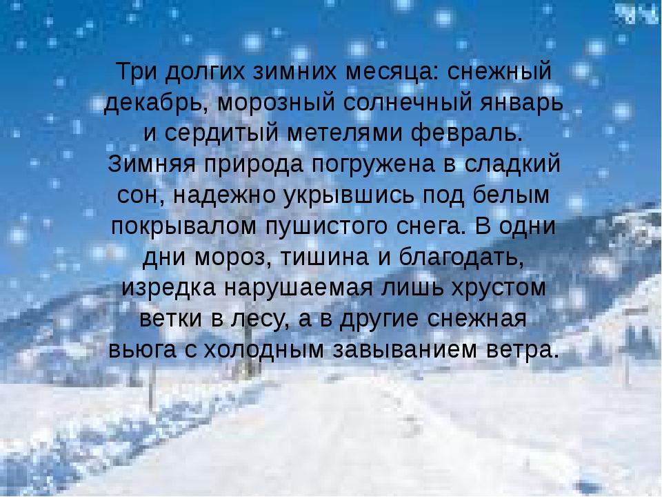 Три долгих зимних месяца: снежный декабрь, морозный солнечный январь и сердит...