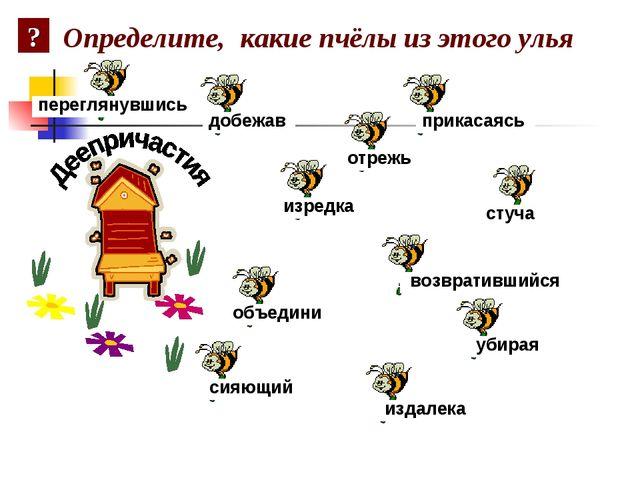 Определите, какие пчёлы из этого улья добежав убирая стуча прикасаясь возврат...