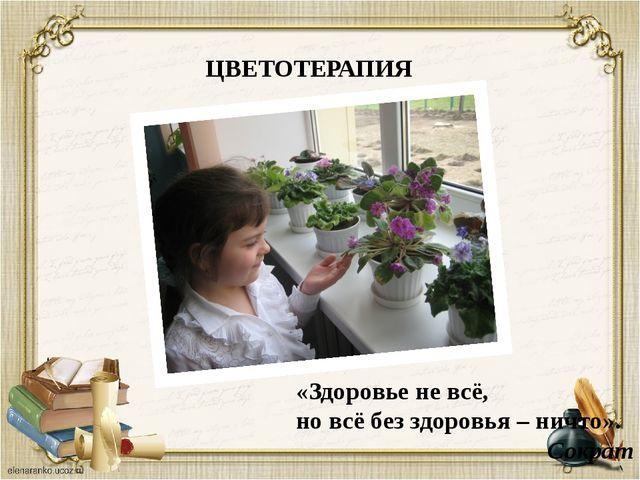 «Здоровье не всё, но всё без здоровья – ничто». Сократ ЦВЕТОТЕРАПИЯ