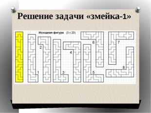 Решение задачи «змейка-1»
