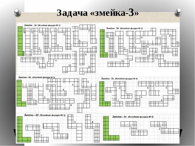 Задача «змейка-3»