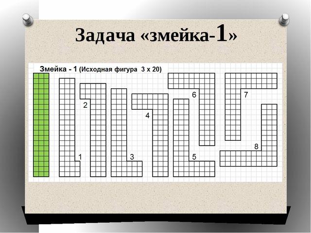 Задача «змейка-1»