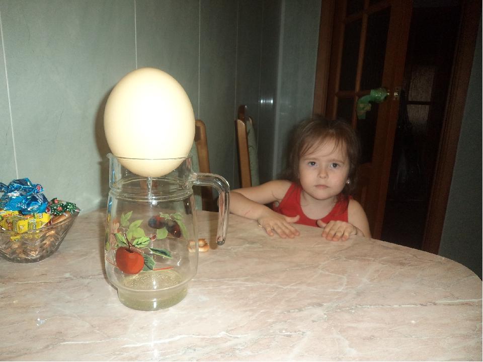 ПОДБОР МАТЕРИАЛОВ: Страусиное яйцо Гуашь и кисти Пайетки и клей ИНСТРУМЕНТЫ:...