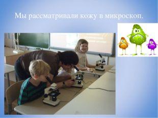 Мы рассматривали кожу в микроскоп.
