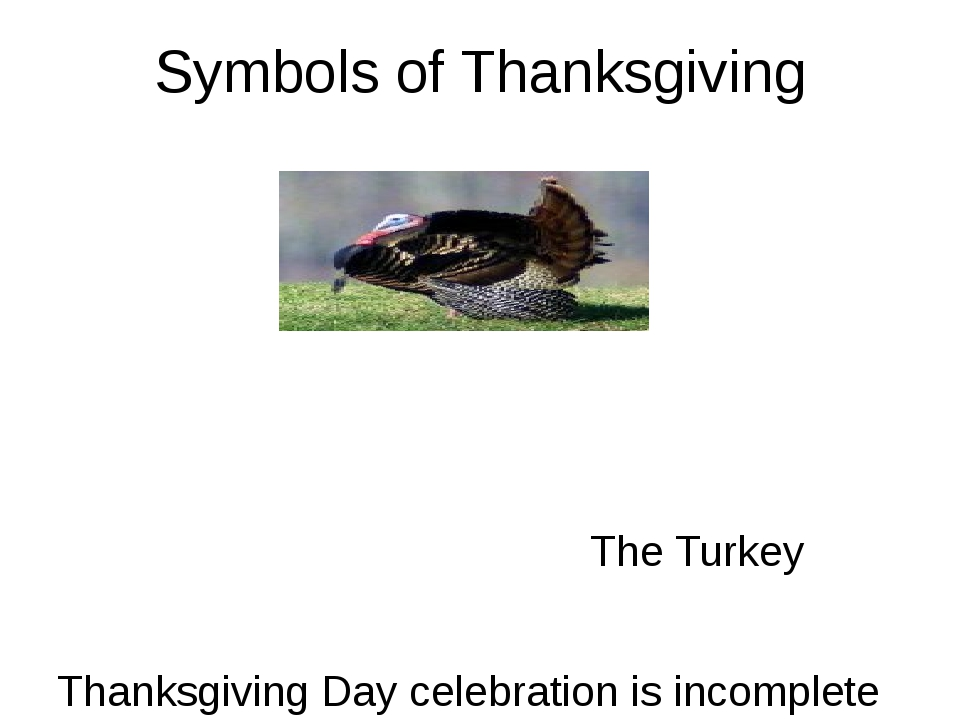 Symbols of Thanksgiving The Turkey Thanksgiving Day celebration is incomplete...