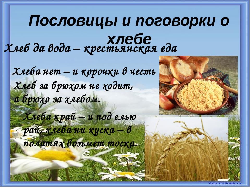 Пословица про русский язык в картинках
