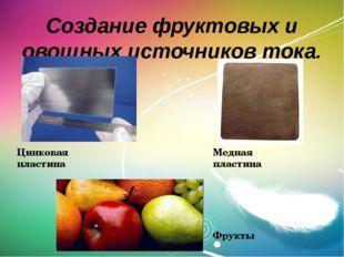 Создание фруктовых и овощных источников тока. Цинковая пластина Медная пласти