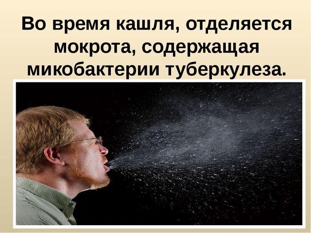Во время кашля, отделяется мокрота, содержащая микобактерии туберкулеза.