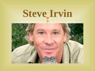 Steve Irvin 