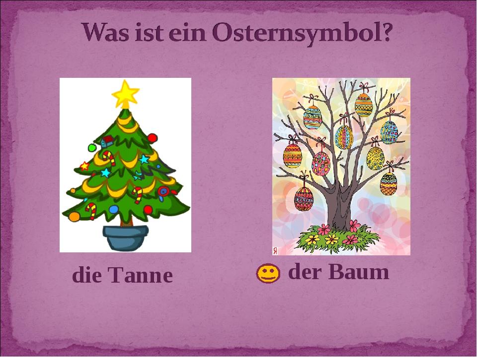 die Tanne der Baum