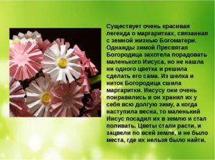 Существует очень красивая легенда о маргаритках, связанная с земной жизнью Бо