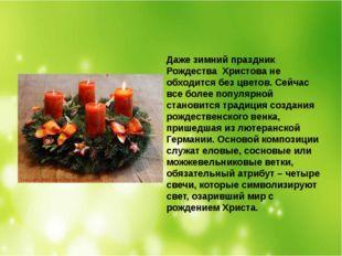 Даже зимний праздник Рождества Христова не обходится без цветов. Сейчас все