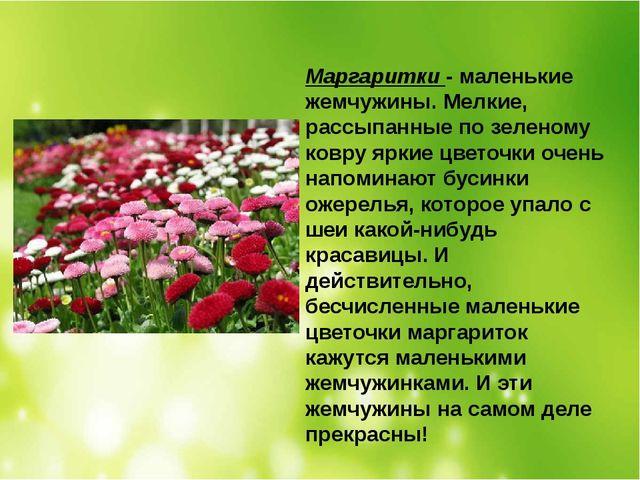 Маргаритки- маленькие жемчужины. Мелкие, рассыпанные по зеленому ковру яркие...