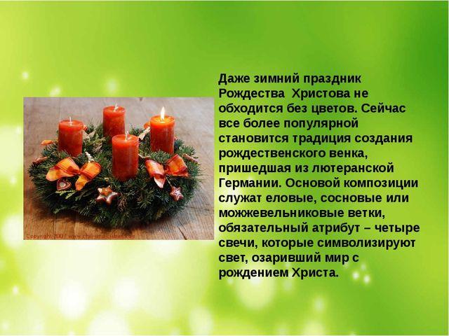 Даже зимний праздник Рождества Христова не обходится без цветов. Сейчас все...